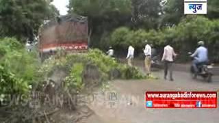 Aurangabad:एएस क्लब जवळ वाळलेले झाड उन्मळून पडल्याने तासभर वाहतूक ठप्प