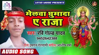 मेलावा घुमादs ए राजा - #Ravi Gold Yadav | Melawa Ghumada Ae Raja | New Devi Geet 2019