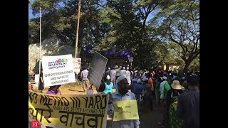 Aarey case: Bombay HC dismisses petitions on forest tag, tree felling