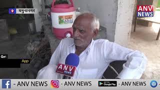 यमुनानगर  में हरियाणा की बात ANV NEWS पर राजकुमार शर्मा के साथ !देखिये || ANV NEWS