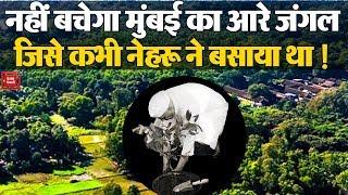 नहीं बचेगा Mumbai का Aarey Forest जिसे कभी Nehru ने बसाया था || Aarey not a forest, says Bombay HC