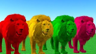 Learn Colors With Wild Animals - Lion Eating Apple And Change Colors | For Children.