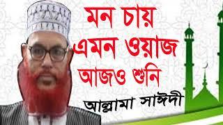 মন চায় এমন ওয়াজ আজও শুনি | Allama Delwar Hossain Saidi Best Waz Mahfil Bangla | Waz Mahfil Saidi