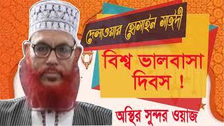 বিশ্ব ভালবাসা দিবস ? Allama Saidi Waz Mahfil Bangla | Saidi Best bangla Waz | Saidi Waz Mahfil