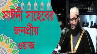 সাঈদীর জনপ্রীয় ওয়াজ মাহফিল । Bangla Waz Allama Delwar Hossain Saidi | Allama Saidy Waz Mahfil