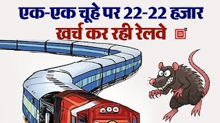 Railway के लिए सिरदर्द बने चूहे, पकड़ने में खर्च किए 6 करोड़ रुपए