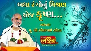 Rameshbhai Oza    Badha Rango Nu Misharan Ej Krishana...