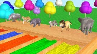 Belajar Hewan liar untuk anak-anak - Mainan binatang untuk anak anak - Videos Para Niños