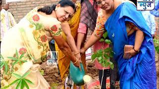 जागतिक पर्यावरण दिनाचे औचित्य साधून मनपा शहरात लावले 20 हजार झाडे-महापौर