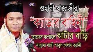 ওহাবী খরেজীরা ক্যাডার বাহিনী তাদের কপালে ঝাটার বাড়ি | Allama Abul Kalam Boyani | Bangla Waz | 2019