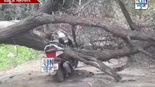 दुचाकीवर झाड कोसळले..! वाळुज येथील कामगार चौकातील घटना...