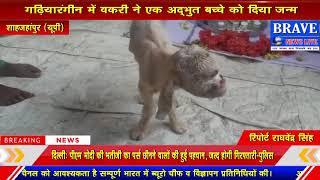 शाहजहांपुर में अदभुत चमत्कार, बकरी ने अदभुत बच्चे को दिया जन्म | BRAVE NEWS LIVE