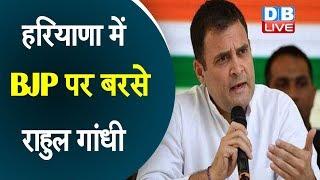 Haryana में BJP पर बरसे Rahul Gandhi   BJP पर जनता से झूठ बोलने का लगाया आरोप  #DBLIVE