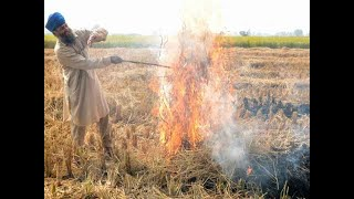 NCR's air quality worsens as farmers continue to burn crop stubble
