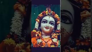 Krishna WhatsApp status || bolo radhe radhe ||