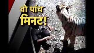 #DELHI चिड़ियाघर में शेर के बाड़े में कूदा युवक, सुरक्षाकर्मियों ने बचाई जान