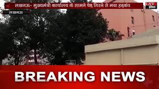 लखनऊ- मुख्यमंत्री कार्यालय के सामने पेड़ गिरने से मचा हड़कंप