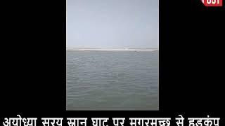 Ayodhya सरयू स्नान घाट पर मगरमच्छ निकलने से मचा हड़कंप, वन विभाग की टीम से मांगी गई मदद