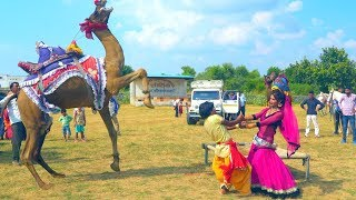 New Dj Rasiya Video Song || गोरिन ते - Gorin Te || Rajasthani Sekhawati
