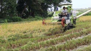 Lobo Donates Harvesting Machines To Parra Farmers, Galore!