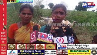 TS  || A POOR FORMER COW WAS DIE SHACKED IN A ELECTRICAL WIRES   || TV11 NEWS ||  NAAGAR KURNOOL