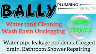 BALLY    Plumbing Services ~Plumber at your home~   Bathroom Shower Repairing ~near me ~in Building