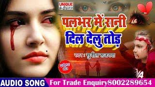 दोस्तों ऐसी दर्द भरी गीत नहीं सुनी होगी रुला देगी आपको - Pal Bhar Me Dil Delu Tod | Sunil Sajanwa