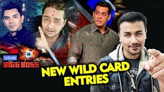 Tehseen Poonawalla & Hindustani Bhau NEW WILD CARD Entry | Full Details | Bigg Boss 13 Update