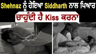 Bigg Boss 13 : Shehnaz ਨੂੰ ਹੋਇਆ Sidharth ਨਾਲ ਪਿਆਰ , ਚਾਹੁੰਦੀ ਹੈ Kiss ਕਰਨਾ   Dainik Savera