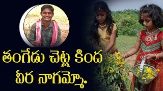 తంగేడు చెట్ల కింద వీర నాగమ్మో..| Telangana Latest Folk Songs 2019 | Singer Ramesh | Top Telugu TV