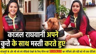 Kajal Raghawani के घर का वीडियो, अपने कुत्ते के साथ मस्ती करते हुए! #KahalRaghwaniHome