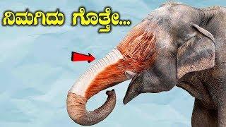 ನಿಮಗಿದು ಗೊತ್ತೇ || Most Amazing And Interesting Facts In Kannada | Unbelievable Facts In Kannada