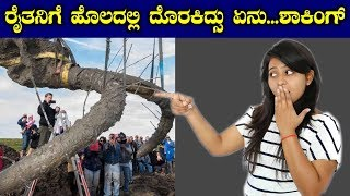 Farmer's Mysterious Discovery Turned Out To Be Something Incredible | ರೈತನಿಗೆ ಹೊಲದಲ್ಲಿ ದೊರಕಿದ್ಸು ಏನು