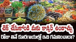 రోజు తినే కూరగాయల్లో ఇది గమనించారా?  Dangerous Vegetables to Eat | Top Telugu TV