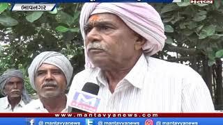 Bhavnagar: ખેડૂતોએ પાક વીમો જલ્દી ચૂકવાય તે અંગે કરી માંગ