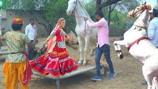 Dj Wala Gano Laga Re Shaadi Ko || डी जे वाला गानो लगा शादी को || Rajasthani Sekhawati