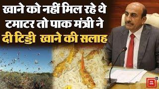 पाकिस्तान के कराची में टिड्डियों किया जीना हराम, कृषि मंत्री ने बिरयानी बनाकर खाने की दी सलाह