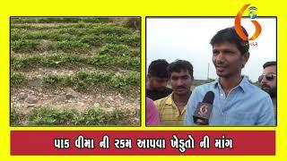 Gujarat News Porbandar 14 11 2019