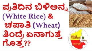 Side effects of White Rice & Wheat in Kannada | Healthy diet list | Kannada Sanjeevani
