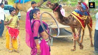 New Dj Rasiya || मेरी एड़ी की धमक   Meri Adi Ki dhamak || maina