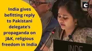 India gives befitting reply to Pakistani delegate's propaganda on J&K, religious freedom in India