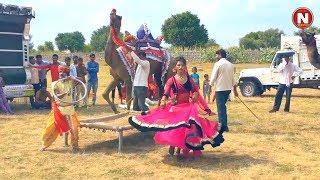 New Dj Rasiya Video Song || बचाइले मेरी ससुलिया - bachaile Meri sasuliya || Vid Evolution Rajasthani