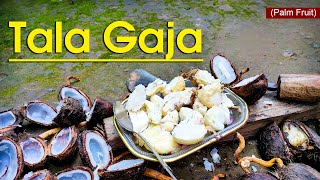 Talagaja (ତାଳ ଗଜା) | Palm Fruit Recipe | Traditional Odisha Recipe | Satya Bhanja