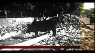 बडनगर के तराना में सड़क हुई गायब ग्राम वासी पहुचे अधिकारियों के पास