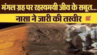 मंगल ग्रह पर और पुख्ता हुआ जीवन होने का दावा, नासा ने जारी की कुछ चौंकाने वाली तस्वीरें