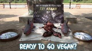 PETA Wants You To Go Vegan! Are You Ready?