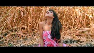 Degree College Movie Theatrical Trailer | Varun | Divya Rao | Narasimha Nandi