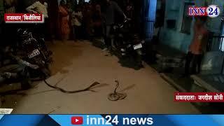 INN24 - बीच सड़क लड़ते रहे कोबरा प्रजाति के नाग  नागिन,लड़ाई देखने उमड़ी भीड़