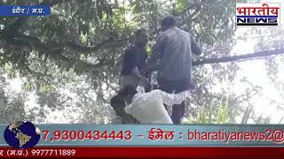 बाघ के पिंजरे में कूदने के लिए जाली पर चढ़ा युवक, पास तक आ गया टाइगर, स्टाफ ने बचाया #bn #Indore