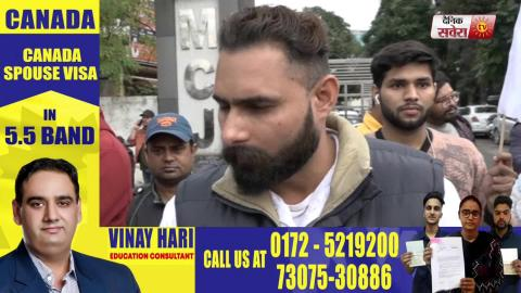 अवारा पशुओं को लेकर 'Sarbat Foundation' ने Jalandhar Nagar Nigam के बाहर दियाधरना